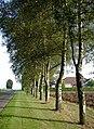 Fields Close Road, Ottringham - geograph.org.uk - 981685.jpg