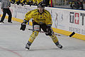 Finale de la coupe de France de Hockey sur glace 2014 - 132.jpg