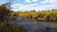 Fish Creek E Calgary August 2015.jpg