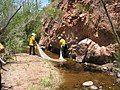 Fish rescue during cave creek complex.jpg