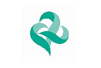 Kai, Yamanashi - Image: Flag of Kai Yamanashi