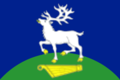 Flag of Kestengskoe (Karelia).png