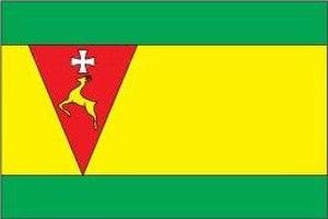 Sarny - Image: Flag of Sarnenskyj