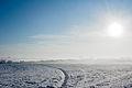 Flickr - Laenulfean - november winter (1).jpg