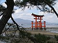 Floating Torii during low tide - panoramio.jpg