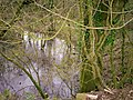 Flooded Disused Quarry, Trenewydd Lane, Llanteg - geograph.org.uk - 1169922.jpg