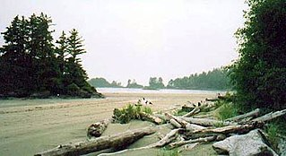 island in front of Canadian Pacific coast