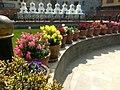 Flower 36 HDR.jpg