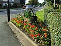 Flower bed on Main Road - geograph.org.uk - 998061.jpg
