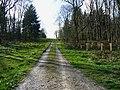 Footpath through Wilton Brail - geograph.org.uk - 1248763.jpg