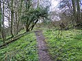 Footpath to Hindon Lane - geograph.org.uk - 742378.jpg