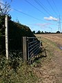 Footpath under the pylons - geograph.org.uk - 567064.jpg