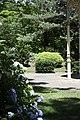Forest Park, Springfield, Massachusetts - panoramio (4).jpg