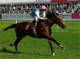 Northern Dancer - The undefeated Frankel is inbred to Northern Dancer