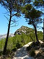 GR221 near Sant Elm - panoramio.jpg