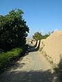 Garden Way - Wall - trees - streamlet - 17 Shahrivar st - Nishapur 29.JPG