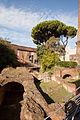 Garden of the Torre delle Milizie.jpg