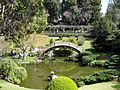 Gardenology-IMG 4956 hunt10mar.jpg