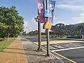 Geese walking sign, KAIST.jpg