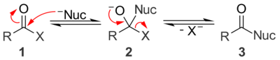 A general mechanism for base catalyzed nucleophilic acyl substitution