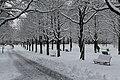 Geneve Sous la neige - 2013 - panoramio (28).jpg
