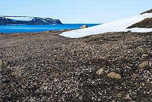 The Geographers Bay, Zemlya Georga, Franz Josef Land