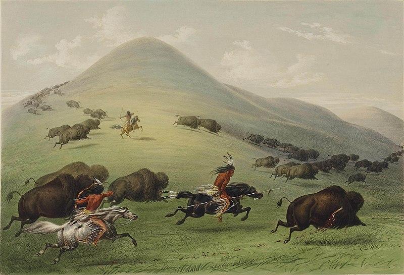 File:George Catlin - Buffalo hunt.jpg