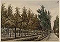 Gerrit Lamberts (1776-1850), Afb 010097002150.jpg
