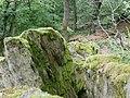 Gesteinsformation im Burghain Falkenstein.jpg