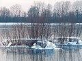 Glace sur la Marne.jpg