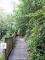Glantwymyn, UK - panoramio (2).jpg