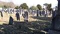 Glasnevin Cemetery (4512310119).jpg
