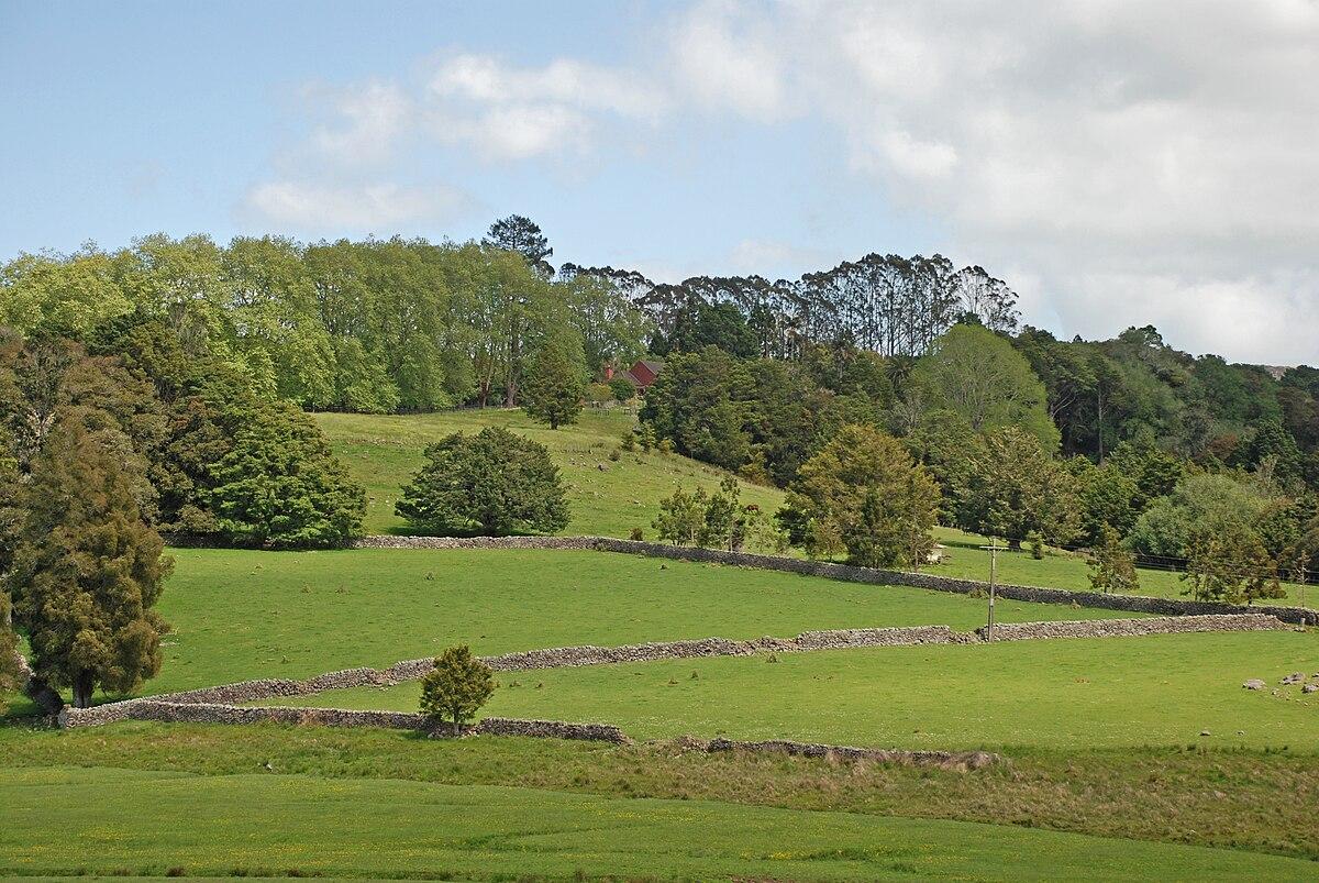 New Zealand Wikipedia: Glenbervie, New Zealand
