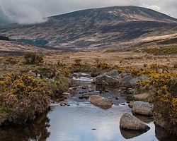Glendasan River, Wicklow Mountains.jpg