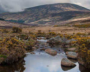 Wicklow Mountains - Tonelagee mountain seen from the Glendasan valley, Wicklow Mountains