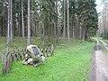Gmina Ruciane-Nida, Poland - panoramio - Wojciech Zabolotny (6).jpg