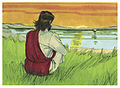 Gospel of Matthew Chapter 14-21 (Bible Illustrations by Sweet Media).jpg