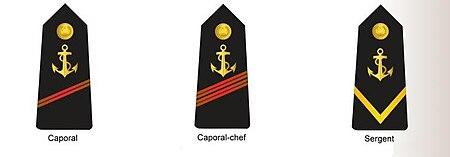 شارات الخاصة برتب القوات البحرية ضباط الصف