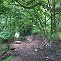 Graig Llanishen Footpath, Thornhill - geograph.org.uk - 441288.jpg