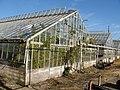 Greenhouses-2.jpg