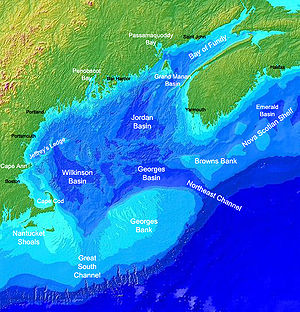 Georges Bank - Map of the Gulf of Maine; Georges Bank is the light blue region in the bottom center of the image.
