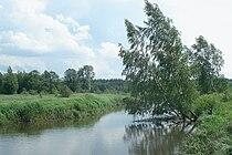 Guslitsa near Hoteichi 9003.jpg