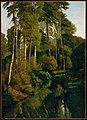 Gustave Courbet - Stream in the Forest - 55.982 - Museum of Fine Arts.jpg