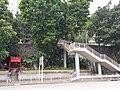 HK CWB 大坑 Tai Hang 銅鑼灣道 Tung Lo Wan Road red temple n Tai Hang Road outdoor stairs October 2019 SS2 50.jpg