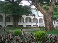 HK Kln Park 香港文物探知館 Heritage Discovery Centre Saturday Tree.JPG