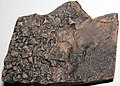 Halite salt casts (Carrara Formation, Cambrian) 3.jpg
