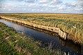 Hallig Hooge Nordsee (50732672367).jpg