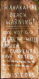 "Photo of sign reading ""HANAKAPIAI BEACH WARNING! DO NOT GO NEAR THE WATER UNSEEN CURRENTS HAVE KILLED 83 (displayed as 16 groups of 4 vertical lines with 1 diagonal line marking a group of 5 and three additional lines) VISITORS"