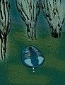 Hanburia gloriosa.jpg