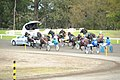 Harness racing at Fairfield Showground.jpg